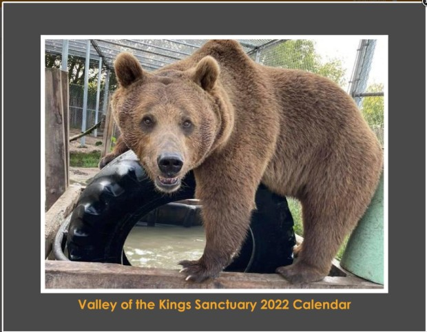 2022-calendar